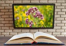 Libro rasgado en la tabla TV en la pared del ladrillo decorativo imagen de archivo