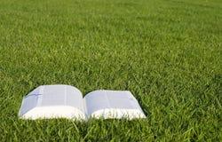 Libro su erba Immagini Stock