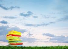 Libro sull'erba Immagine Stock