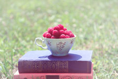 Libro sulla natura Una tazza del lampone che sta sul libro blu scuro Raccolto del lampone Immagini Stock