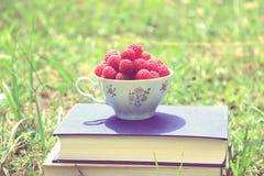 Libro sulla natura Una tazza del lampone che sta sul libro blu scuro Raccolto del lampone Fotografia Stock