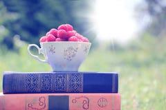 Libro sulla natura Una tazza del lampone che sta sul libro blu scuro Raccolto del lampone Immagini Stock Libere da Diritti