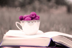 Libro sulla natura Una tazza del lampone che sta sul libro blu scuro Raccolto del lampone Immagine Stock