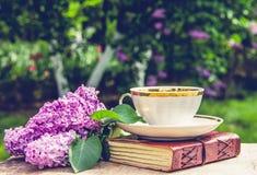 Libro, taza de té y lila Té fragante en el jardín Concepto romántico Imagen de archivo libre de regalías