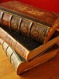 Libro unico Fotografia Stock