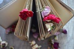 Libro viejo que se coloca en la tabla de madera y rosas secadas Imagenes de archivo