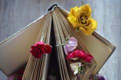 Libro viejo que se coloca en la tabla de madera y rosas secadas Foto de archivo libre de regalías