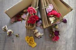 Libro viejo que se coloca en la tabla de madera y rosas secadas Imagen de archivo