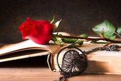 Libro y amor Imagen de archivo libre de regalías