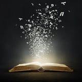 Libro y caracteres abiertos Imagenes de archivo