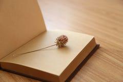 Libro y flor secada Imágenes de archivo libres de regalías
