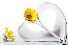Libro y flores Imagen de archivo