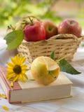 Libro y manzana Foto de archivo libre de regalías