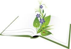 Libro y ramo de flores con la mariquita Imagenes de archivo