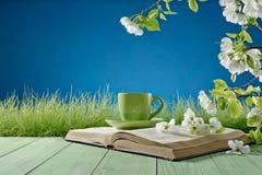 Libro y taza en el fondo de la naturaleza Foto de archivo libre de regalías