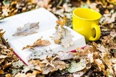Libro y taza en hojas de otoño Foto de archivo