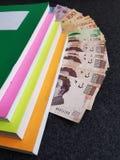 libros en colores fluorescentes y cuentas mexicanas en diversas denominaciones Imágenes de archivo libres de regalías