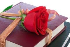 Libros en el embalaje del regalo aislado en un blanco Imagenes de archivo