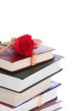 Libros en el embalaje del regalo aislado en un blanco Imagen de archivo libre de regalías