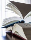 Libros en el vector de madera Foto de archivo libre de regalías
