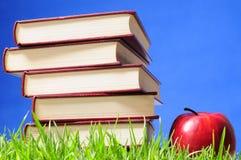Libros en hierba. Concepto educativo. Imagen de archivo libre de regalías