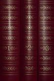 Libros en un estante Fotografía de archivo libre de regalías