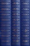Libros en un estante Imagenes de archivo
