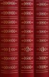 Libros en un estante Foto de archivo