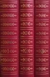 Libros en un estante Imagen de archivo libre de regalías