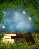 Libros en un prado Imagen de archivo libre de regalías