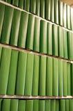 Libros verdes en el estante Imagenes de archivo