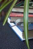 Libros. Vidrios y planta verde Foto de archivo