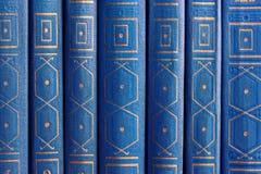 Libros viejos en un estante de madera Fotos de archivo libres de regalías