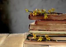 Libros viejos en una tabla de madera Ramas de hojas amarillas en los libros imagenes de archivo