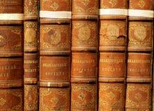Libros viejos - Shakespeare Imagen de archivo libre de regalías