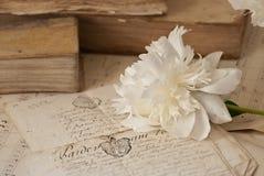 Libros viejos y flores fotos de archivo