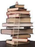 Libros y okimono Imagen de archivo libre de regalías