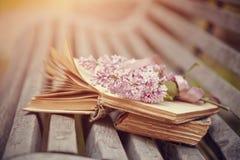 Libros y rama olvidados de una lila en un banco Foto de archivo libre de regalías