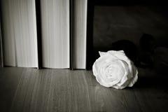 Libros y Rose blanca Imagenes de archivo