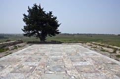 Libya. Archaeological site of Cyrene,the ruins of a Roman villa Stock Photo