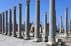 Libya. The archaeological site of Leptis Magna Royalty Free Stock Images