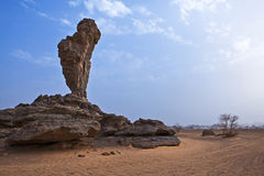 Libya. Sahara desert,the Akakus rocky area Royalty Free Stock Images