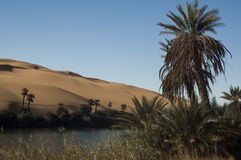 Libyan sahara desert Royalty Free Stock Photo