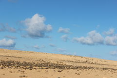 Libyan-sidra. This place name is sidra oil field side of Libya Royalty Free Stock Image