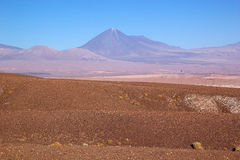 Licancabur i den Atacama öknen, Chile Arkivbilder
