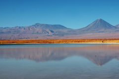 Licancabur volcano and lagoon  in chile Stock Photography