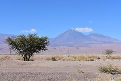 Licancabur Volcano at San Pedro de Atacam stock photography