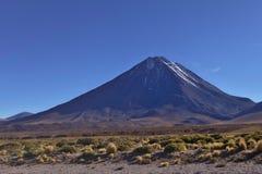 Licancabur vulkan Royaltyfri Foto