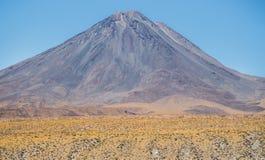 Licancabur vulkan i de höga Anderna bergen Royaltyfri Fotografi