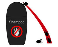 Lice shampoo and hair with lice Stock Image